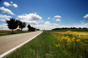 Der Weg und das Ziel 2009: 75k € durch sparen!